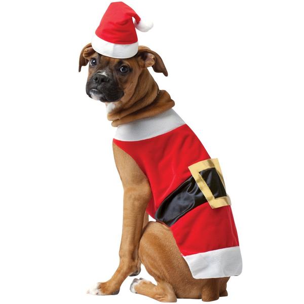 Funidelia FR  Costume de Père Noël pour chien