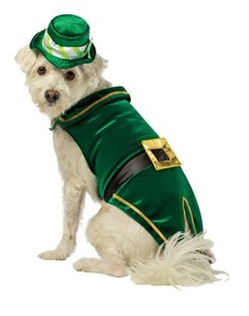 Disfraz de Leprechaun Deluxe para perro