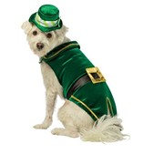 Costume leprechaun deluxe pour chien