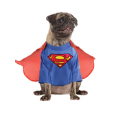 Superman classic costume for a dog