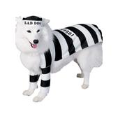 Disfraz de preso para perro