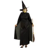 Disfraz de Bruja El Mago de Oz