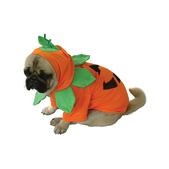 Hundekostüm Halloween Kürbis