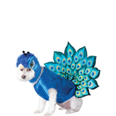 Peacock costume for dogs