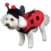 Costume de coccinelle pour chien