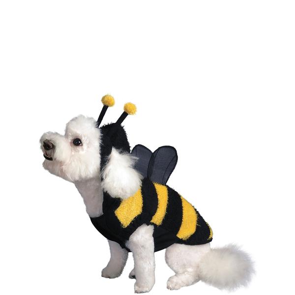 D a mundial de los animales disfraza a tu mascota ideas para disfrazarse - Deguisement halloween chien ...